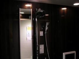 TOTO, オーバーヘッドシャワー, シャワー, シャワーヘッド, レインダンス, 風呂, 浴室